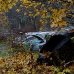 Abandon car