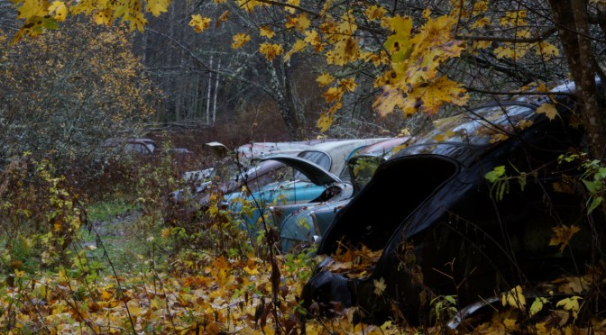 Visiting an Automobile graveyard in Sweden