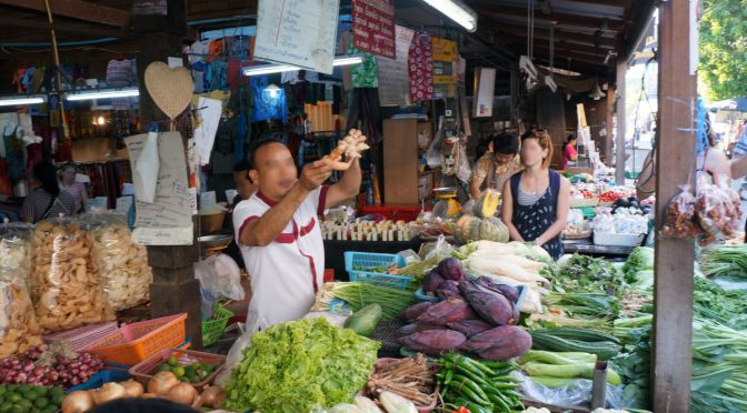 Why I love travelling South East Asia…
